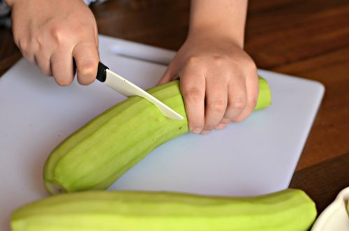 image showing a person cutting a peeled bottle gourd