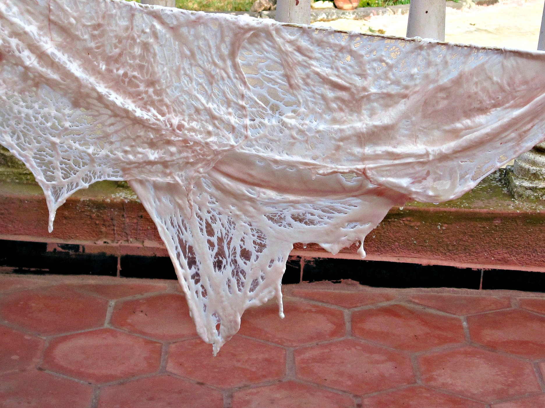 lacy caul fat hanging to dry