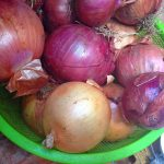 Some types of Moroccan onions